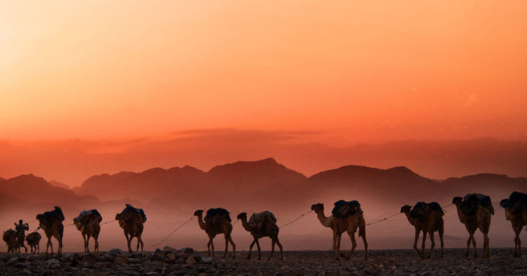 desert photo with nomads